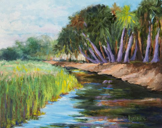 Lazy Canal, Myakka, Oil on Canvas